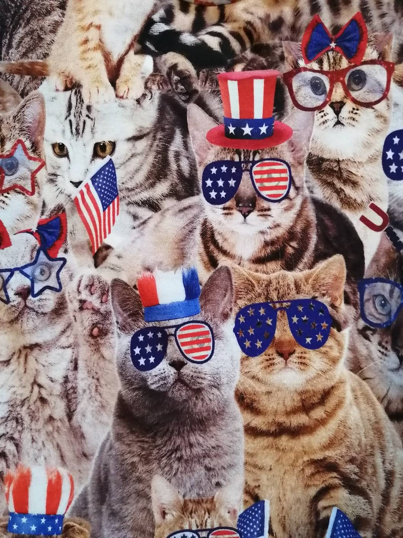 2T cats 4th of July patriotic tank top