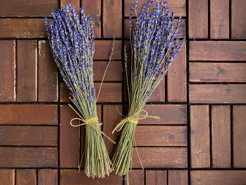 Dried Fragrant Lavender Bunch 90+ Stems
